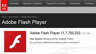 Adobe Flash Player (1)